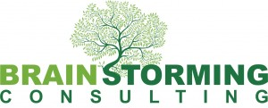Brainstorming Consulting logo