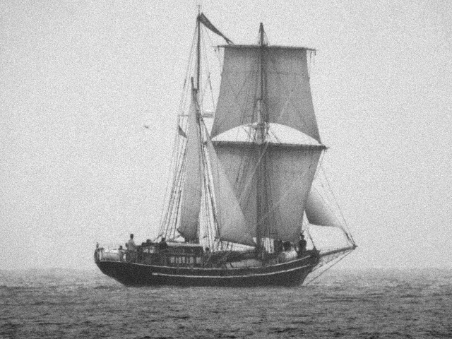corabii