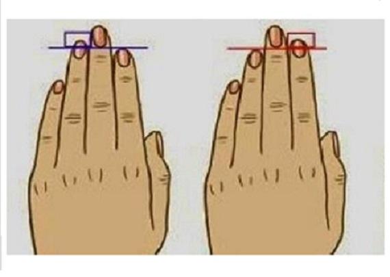 lungimea degetelor 1