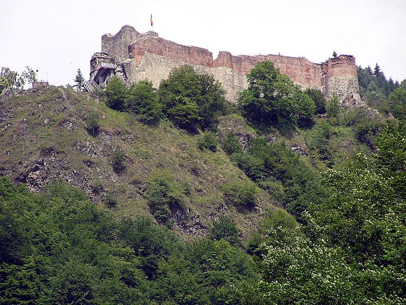 cetatea poenari2