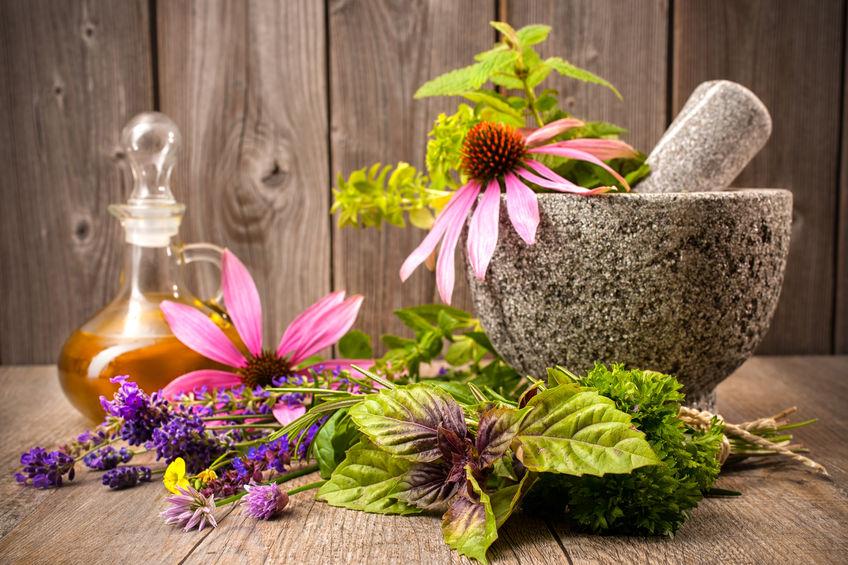 Extractele naturale din plante, o soluție pentru tinerețea veșnică