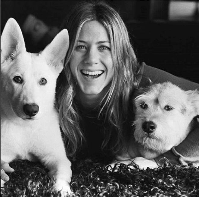 Jennifer Aniston si cainii ei