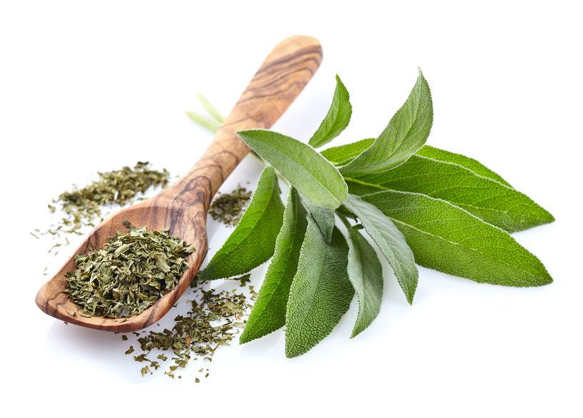 Salvia, uscată sau proaspătă, are proprietăți antiseptice și antibacteriene