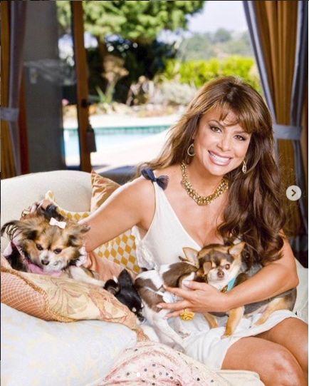 Paula nu are copii, dar intotdeauna a avut casa plina de caini
