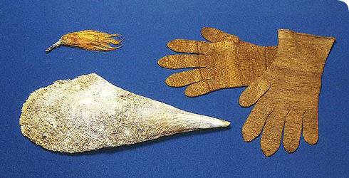 Filamentele scoicilor Pinna nobilis și mănuși lucrate probabil la începutul secolului al XIX-lea